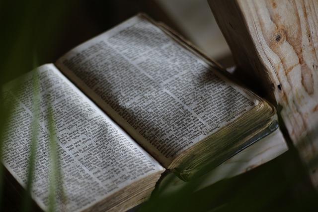 OGŁOSZENIA NA XXVII NIEDZIELĘ ZWYKŁĄ
