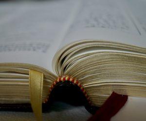 OGŁOSZENIA PARAFIALNE NA XXVII NIEDZIELĘ ZWYKŁĄ